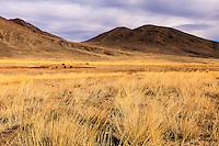 Asia Mongolia, Altai mountain,Saikhsai, mongolian landscape