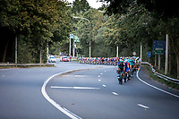 peloton chasing<br /> <br /> 99th Brussels Cycling Classic 2019<br /> One Day Race: Brussels > Brussels 189.4km<br /> <br /> ©kramon