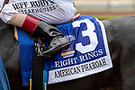 """ARCADIA, CA  SEPTEMBER 27:#3 Eight Rings, ridden by John Velazquez, saddle towel after winning the American Pharoah Stakes (Grade 1) """"Win and You're In Breeders' Cup Juvenile Division"""" on September 27, 2019 at Santa Anita Park in Arcadia, CA."""