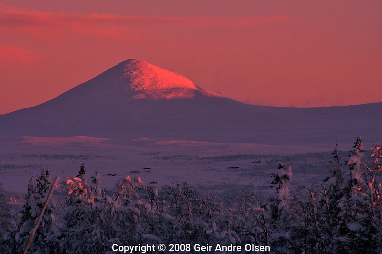 The peak Muen in pink sunrise one winters morning in the Norwegian mountains