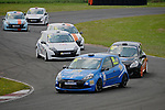 2013 : Michelin Clio Cup Series
