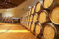 Oak barrels in rows and stainless steel horizontal tanks, Maison Louis Jadot, Beaune Côte Cote d Or Bourgogne Burgundy Burgundian France French Europe European