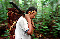 """Índio Werekena morador da comunidade de Anamoim no alto rio Xié carrega um fardo chamado de """" piraíba"""" carregado de fibras de piaçaba(Leopoldínia píassaba Wall). A fibra , um dos principais produtos geradores de renda na região é coletada de forma rudimentar. Até hoje é utilizada na fabricação de cordas para embarcações, chapéus, artesanato e principalmente vassouras, que são vendidas em várias regiões do país.<br />Alto rio Xié, fronteira do Brasil com a Venezuela a cerca de 1.000Km oeste de Manaus.<br />06/06/2002.<br />Foto: Paulo Santos/Interfoto Expedição Werekena do Xié<br /> <br /> Os índios Baré e Werekena (ou Warekena) vivem principalmente ao longo do Rio Xié e alto curso do Rio Negro, para onde grande parte deles migrou compulsoriamente em razão do contato com os não-índios, cuja história foi marcada pela violência e a exploração do trabalho extrativista. Oriundos da família lingüística aruak, hoje falam uma língua franca, o nheengatu, difundida pelos carmelitas no período colonial. Integram a área cultural conhecida como Noroeste Amazônico. (ISA)"""