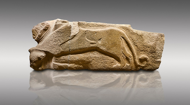 Alaca Hoyuk - Hittite lion sculptures corner Stone. . Andesite. Alacahoyuk, 1399 - 1301 B.C. Anatolian Civilisations Museum, Ankara, Turkey.<br /> <br /> Corner stone decorated by lion, bull and winged sun disk. It was discovered at the right side of the Alacahoyuk sphinx door. The lion puts his front legs on a small bull. There is a Hittite winged sun disk on the abdomen of the lion, which can be seen from a lower location. The position of the sun course indicates that the stone is situated in a high place. <br /> <br /> Against a brown gray background.