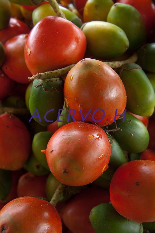 Produção de produtos diversos, açai, pimenta, cupuaçu, pupunha e jambu.<br /> Barcarena, Pará, Brasil<br /> Foto Paulo Santos