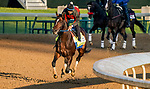 April 26, 2021: Midnight Bourbon, trained by trainer Steve Asmussen, exercises in preparation for the Kentucky Derby at Churchill Downs on April 26, 2021 in Louisville, Kentucky. Scott Serio/Eclipse Sportswire/CSM