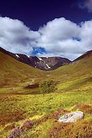 Coire Ardair and Stob Poite Coire Ardair, Creag Meagaidh Nature Reserve, Highlands
