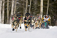Jeff Kings sled dog team running on trail on Long Lake @ 2006 Iditarod Restart Willow AK Winter