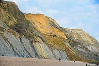 BNPS.co.uk (01202 558833)<br /> Pic: Graham Hunt/BNPS<br /> <br /> People ignoring safety advice to keep clear of the huge cliff fall at Seatown in Dorset.<br /> <br /> General view of the huge landslip from the beach.