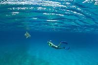 Snorkeler with Green Sea Turtle<br /> Turtle Bay<br /> Buck Island<br /> Virgin Islands