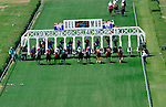 Riders break from the gate on the famous turf course at the Del Mar Thoroughbred Club in Del Mar, California.