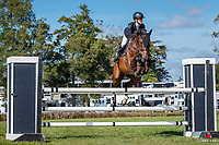 NZL-Jordyn Appleton rides  Scotsmans Valley. Class 21: Mainland Coachwork Junior Rider Series Sponsored by ZEALANDIA NURSURIES. 2021 NZL-Auckland Veterinary Centre Brookby SJ Grand Prix Show. Papatoetoe, Auckland. Sunday 14 February. Copyright Photo: Libby Law Photography