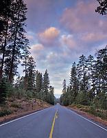 Road into Metolius River, Oregon