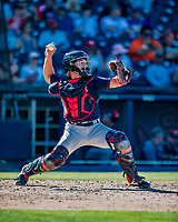 2 March 2019: Minnesota Twins top prospect catcher Ben Rortvedt in action during a Spring Training game against the Washington Nationals at the Ballpark of the Palm Beaches in West Palm Beach, Florida. The Twins fell to the Nationals 10-6 in Grapefruit League play. Mandatory Credit: Ed Wolfstein Photo *** RAW (NEF) Image File Available ***