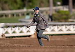 OCT 27: Zoe Cadman at Santa Anita Park in Arcadia, California on Oct 27, 2019. Evers/Eclipse Sportswire/Breeders' Cup