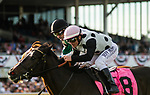 March 7, 2020: #8, OUTBURST (GB), stays up at the wire with Jockey Javier Castellano to win the Grade III Florida Oaks for Trainer Eddie Kenneally on Tampa Bay Derby Day on March 7, 2020 in Tampa, FL. (Photo by Carson Dennis/Eclipse Sportswire/CSM)