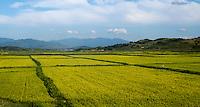 Fahrt in die Myohyang-Berge, Nordkorea, Asien<br /> On the way to the Myohyang Mountains, North Korea, Asia