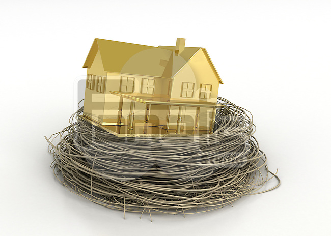 Illustrative image of gold house in bird's nest representing property profit
