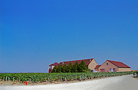 Chablis: the winery and vineyards of Jean Marc Brocard, one of the best known producers