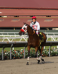 "July 26, 2014: Big Macher with Tyler Baze aboard win the Grade I Breeder's Cup ""Win and You're In"" Bing Crosby at Del Mar Thoroughbred Club in Del Mar, California. Zoe Metz/ESW/CSM"
