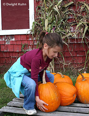 HS24-503z  Picking Pumpkins, PRA