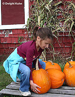 HS24-503z  Picking Pumpkins, PRA