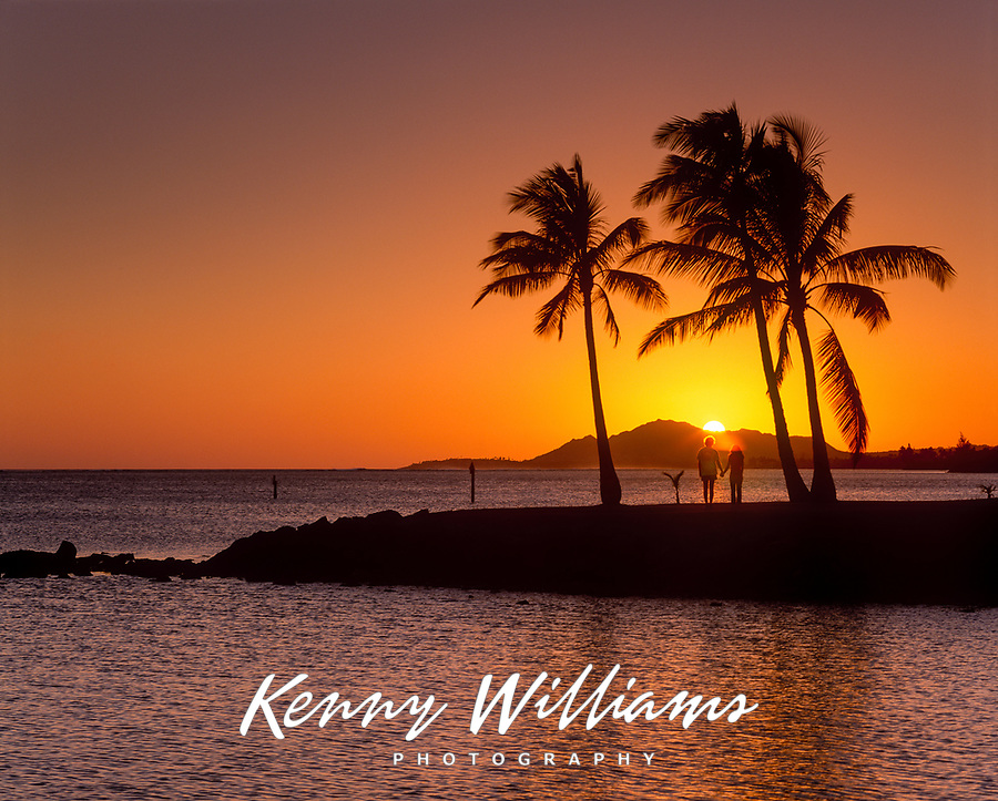 Couple Holding Hands, Watching Sunset Between Palm Trees, Honolulu, Oahu, Hawaii, USA.