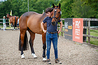 GBR-Rosalind Canter's Rehy Royal Diamond during the First Horse Inspection for the CCI-L 4*. 2021 GBR-Bicton International Horse Trials. Devon. Great Britain. Copyright Photo: Libby Law Photography