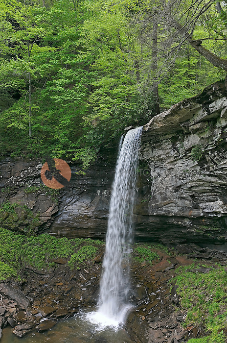 Hill's Creek Falls-Lower Falls in Rural West Virginia Mountains, located in the Monongahela National Forest