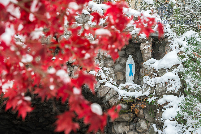Nov. 14, 2014; Grotto after a snowfall. (Photo by Matt Cashore/University of Notre Dame)