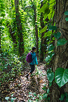 A woman hikes in the jungle near Rainbow Falls in Hilo, Big Island of Hawai'i.