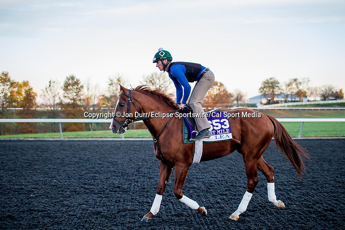 October 29, 2015:  Lea, trained by William I. Mott and owned by Claiborne Farm & Adele Dilschneider, exercises in preparation for the Breeders' Cup Mile at Keeneland Race Track in Lexington, Kentucky on October 29, 2015. Jon Durr/ESW/CSM