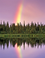 Rainbow reflected in backwaters of Gulkana River, Alaska