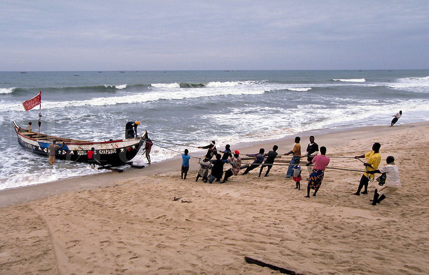 After an all night fishing trip, local African tribesmen bring in their boats (hand made wood) and catch to sell along the coastline in small markets; ropes are used to pull boat ashore and stablize the craft until it goes out again to sea; herring a and
