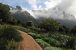 Pathway in Kirstenbosch National Botanical Garden on the flanks of Table Mountain, Cape Town, South Africa.