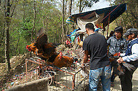 Selling chicken before they been offered at Dakshinkall Bungamati, Khokana Animal sacrifice Temple, Kathmandu, Nepal