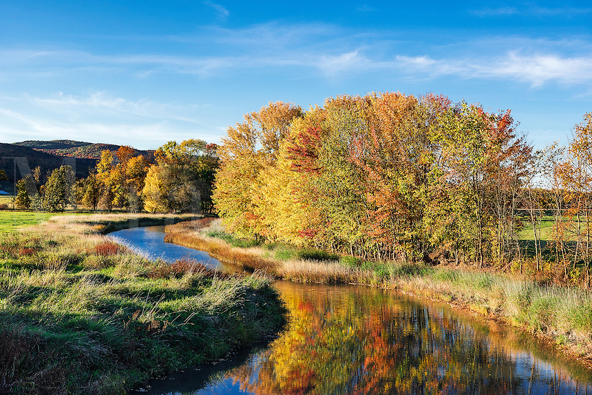 Meandering steam with autumn trees, Middlebury, Vermont, USA.