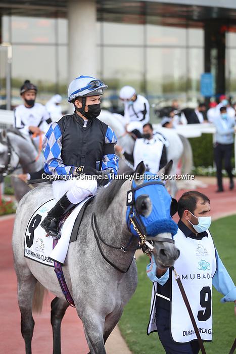 March 27 2021: MASHHUR AL KHALEDIAH (FR) #9, in the post parade for the Dubai Kahayla Classic at Meydan Racecourse, Dubai, UAE. Shamela Hanley/Eclipse Sportswire/CSM