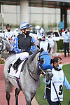 March 27 2021: MASHHUR AL KHALEDIAH (FR) #9, in the post parade for the Dubai Kahayla Classic at Meydan Racecourse, Dubai, UAE. Shamela Hanley/Eclipse Sportswire/CSM