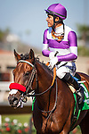 August 8 2015:  Nyquist with Mario Gutierrez up wins the Grade II Best Pal Stakes at Del Mar Race Course in Del Mar CA. Zoe Metz/ESW/CSM