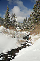A vertical image of the Swan River in winter near Breckenridge, Colorado