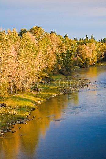 Autumn colors along the shore of the Bitterroot River above Hamilton, Montana