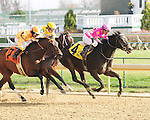 #4 Salty Strike (by Smart Strike), Victor Lebron up, wins the Dream Supreme S. at Churchill Downs for owner Craig B. Singer and trainer Kenneth McPeek, over #7 Cheery (by Distorted Humor), with Shaun Bridgmohan up.November 23, 2012