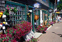 Bar Harbor, ME, Maine, Mount Desert Island, Gift shop in downtown Bar Harbor.