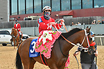 April 17, 2021: #3 Letruska , ridden by Irad Ortiz, Jr. wins the Apple Blossom Handicap  for trainer Fausto Gutierrez at Oaklawn Park in Hot Springs,  Arkansas. Ted McClenning/Eclipse Sportswire/CSM