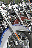 Aligned Harley Davidson Motorcycles ready for the open road