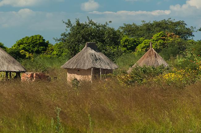 Bush Farm, Eastern Zambia