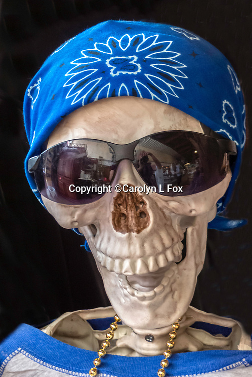 A hat has been placed on a human skull.