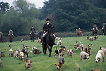 'DUKE OF BEAUFORT HUNT', CAPTAIN AND JOINT MASTER OF THE HUNT LEADING OUT DURING CUB HUNTING