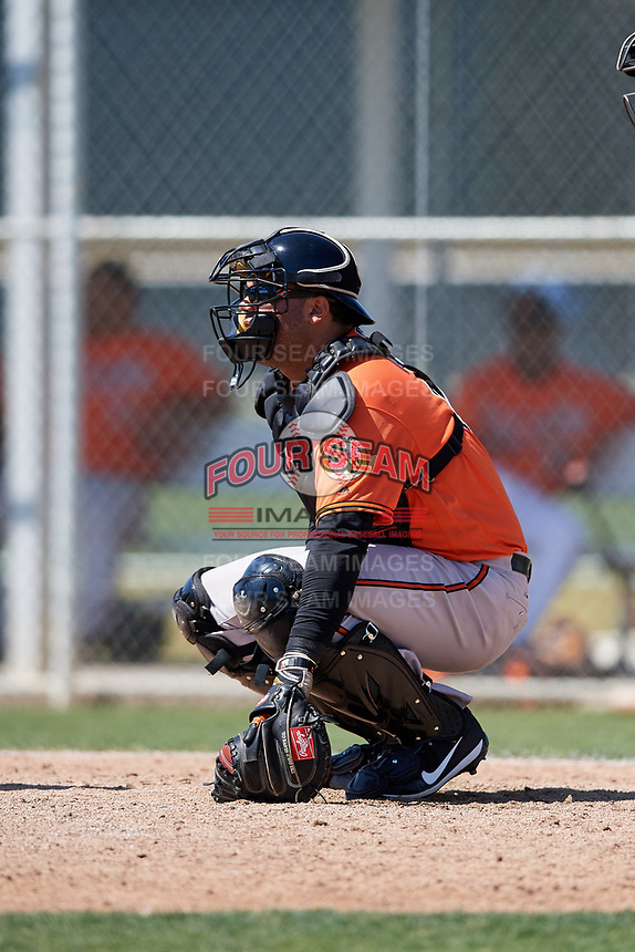 Baltimore Orioles catcher Ronald Soto (61) during a minor league Spring Training game against the Tampa Bay Rays on March 29, 2017 at the Buck O'Neil Baseball Complex in Sarasota, Florida.  (Mike Janes/Four Seam Images)